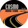 Cosmo Driving School Mississauga Oakville Etobicoke